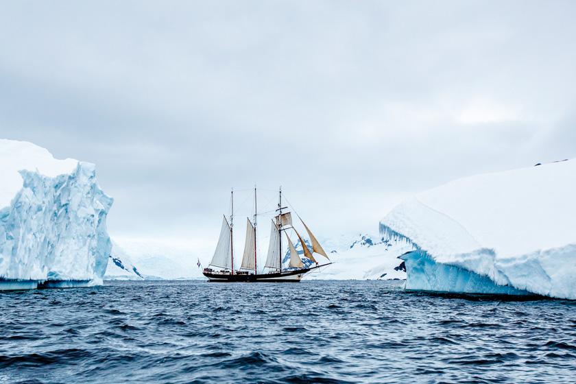 AopZ_Antarctica_2014_01_08_4135